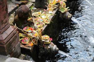 Bali (32 von 37)