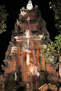 Bali unbearbeitet (3 von 111)