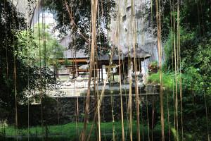 Bali unbearbeitet (34 von 111)