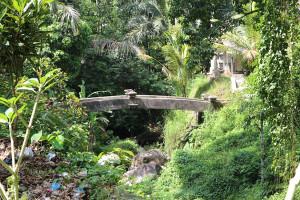 Bali unbearbeitet (35 von 111)