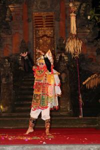 Bali unbearbeitet (7 von 111)