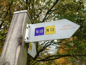 Geierlay - Die längste Hängeseilbrücke Deutschlands-12